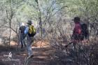 Prospection dans les Aha Hills (c)LB