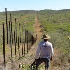 La frontière comme meilleur repère dans ce paysage (c)MJ.