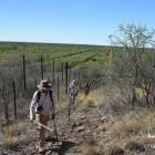 La frontière comme meilleur repère dans ce paysage (c)LB.