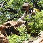 Colline des Baobabs (c)FD.