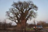Campement au camp des baobabs sur le chemin du retour (c) Laurent Bruxelles
