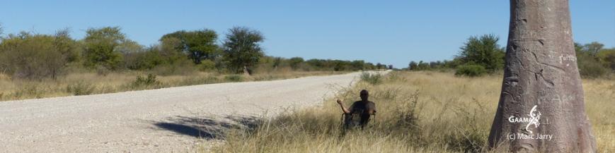 HON avril 2016 piste baobab1000 DPI.jpg