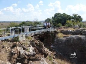 Afr. Sud - Au dessus de la Grotte de Sterkfontein, Miss Pless vient de là (c) L. Bruxelles
