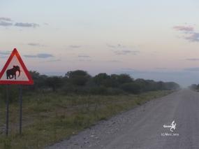 Namibie, sur la route des Aha Hills, au nord de Windhoek (c) M. Jarry