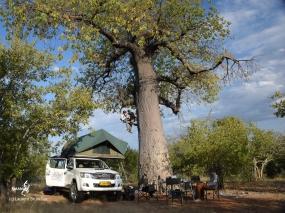 Namibie, Aha Hills, camp au pied de la colline du Léopard, dans le Baobab entrainement au passage de fractionnement (c) L. Bruxelles