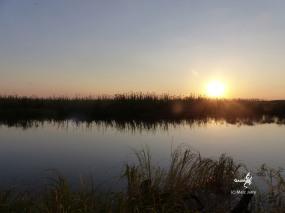 Botswana, Okawango (c) M. Jarry