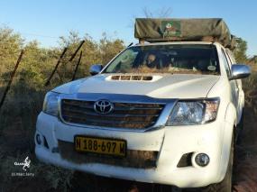 Namibie, Aha Hills, le long de la frontière dans les grandes herbes vers le camp de base de la colline de la Hyenne, isolement... (c) M. Jarry