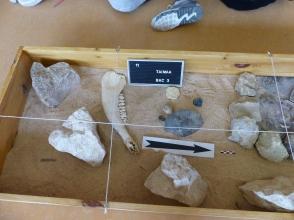 Silex taillés et ossement d'animaux (c)GAAMA
