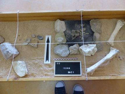 Foyer préhistorique et silex