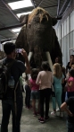 Un mammouth grandeur nature (c)AJCA