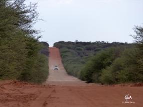 Namibie, interminables pistes rectilignes (c) M. Jarry.