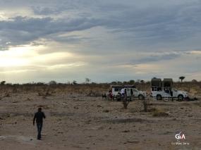 Namibie, pan des éléphants (c) M. Jarry.