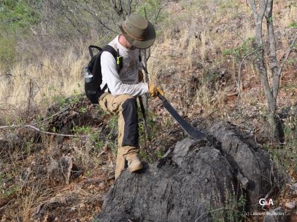 Namibie, Aha Hills. Prospection et recherche d'indices (c) L. Bruxelles.