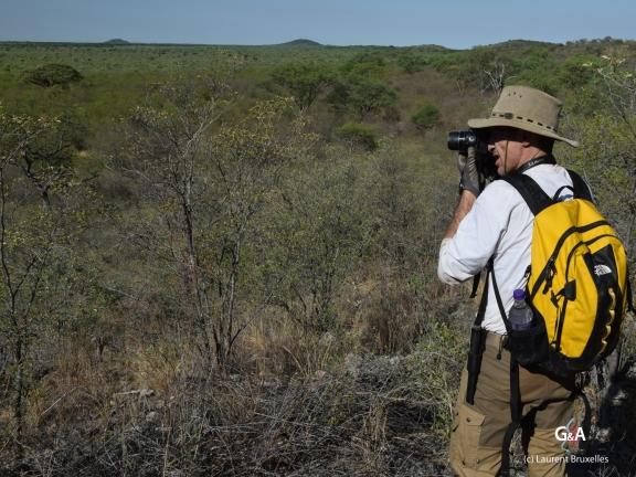 Namibie, Aha Hills. Prospection des collines sud (c) L. Bruxelles.