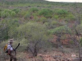 Namibie, Aha Hills. Prospection des collines centrales (c) L. Bruxelles.