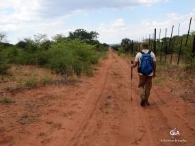 """Namibie, Aha Hills. Notre seule voie """"carrossable"""" permettant de pénétrer au coeur des collines : la piste nord-sud le long de la frontière (c) L. Bruxelles."""