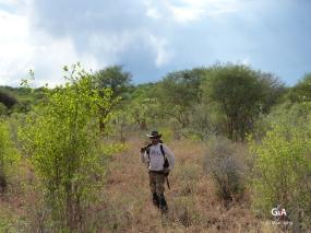 Namibie, Aha Hills. Prospection (c) M. Jarry.