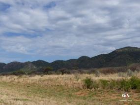 Namibie, secteur d'Otavi. Prochain terrain d'étude. Les collines sont bien plus marquées dans le paysage. Elles sont moins ensevelies dans le paysage (c) F. Duranthon.