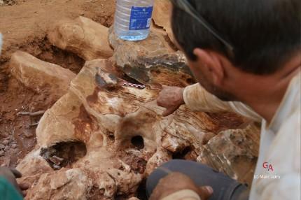 Aha Hills, paléokarst, la calcite ancienne dans laquelle une brèche et une calcite récente (blanche) s'est reformée (c) M. Jarry