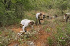 Aha Hills, paléokarst, nettoyage préalable du secteur où affleure la calcite (au pieds de Grégory) (c) M. Jarry